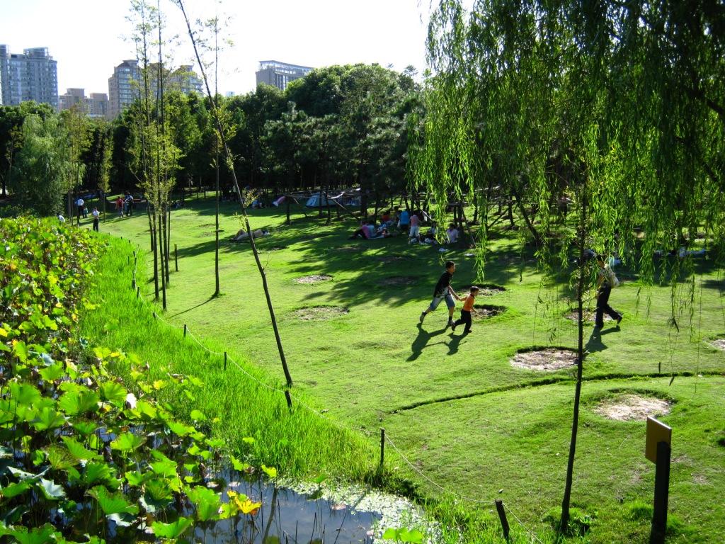 пикник в Century Park Шанхай