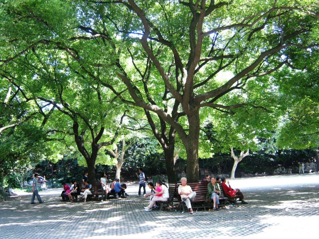 Парк имени Лу Синя в Шанхае