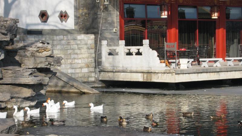 Озеро Хоухай (后海) находится в районе Шичахай, в самом центре Пекина