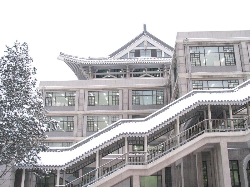 Заснеженный кампус Пекинского Университета