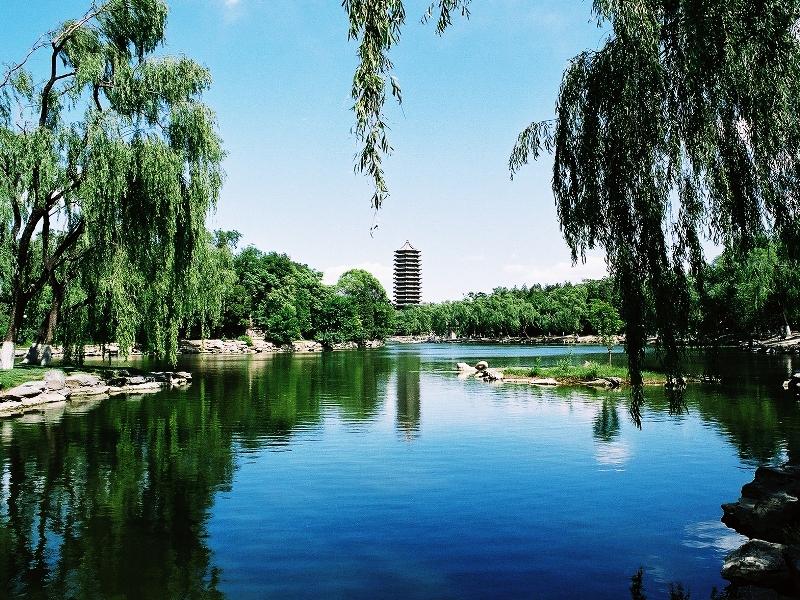 замечательные фотографии знаменитого Пекинского Университета, известного также как «Бэйда», от китайского 北大- Beijing Daxue