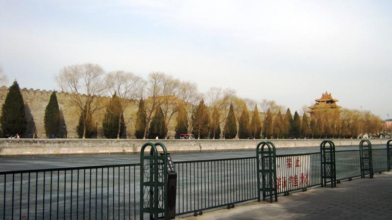 Также как платаны неразделимы с образом Шанхайских улиц, кипарис, безусловно, один из символов Пекина