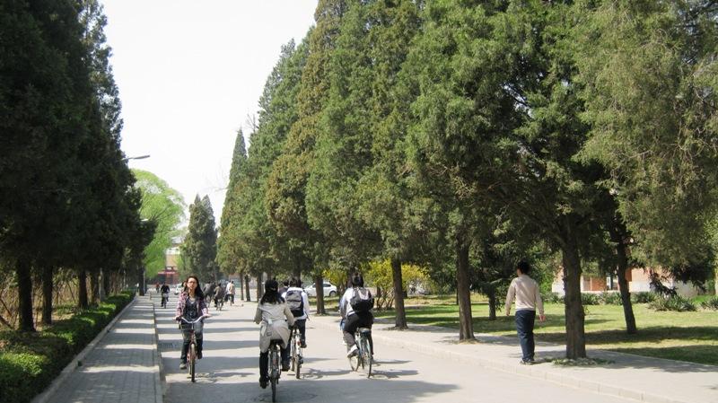 Университет Цинхуа, вместе с соседним Пекинским Университетом, знаменит своим кампусом, расположенным на северо-западе города в районе Хайдянь